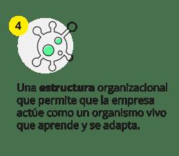 Cuarto motor del cambio, estructura organizacional